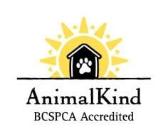 AnimalKind dog training logo