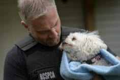 Officer with rescued poodle