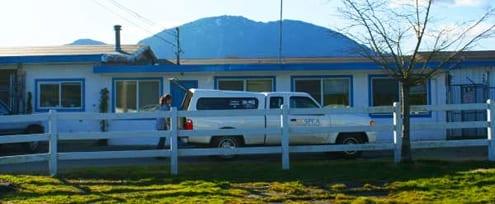 Chilliwack BC SPCA Branch
