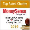 MoneySense Magazine Award