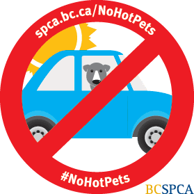 #NoHotPets