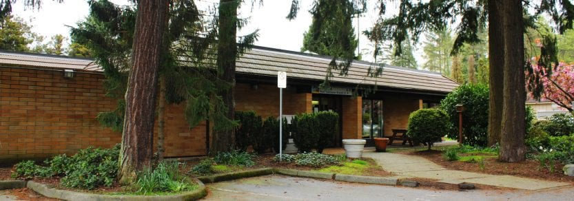 West Vancouver Spca Cats For Adoption