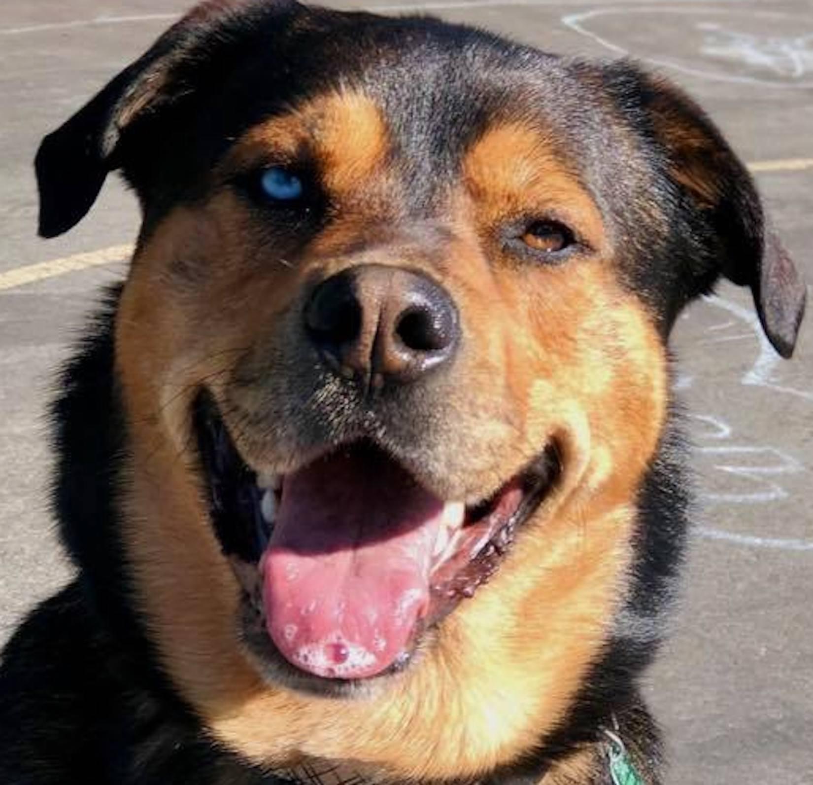 Read Tucker's adoption story
