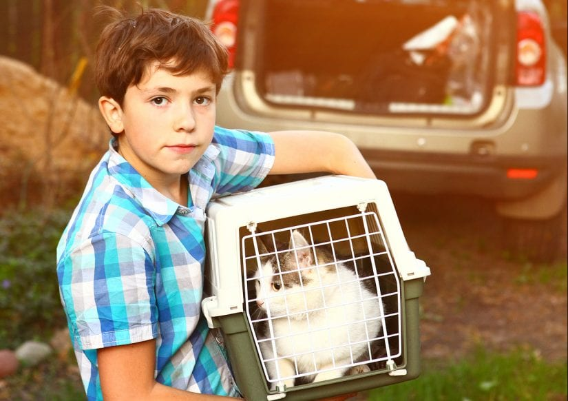 Boy holding cat in pet carrier with car in background