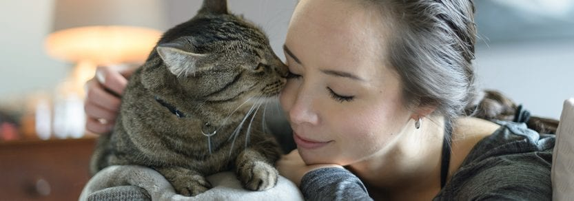 Tabby cat and woman lying down on the couch giving kitty kisses