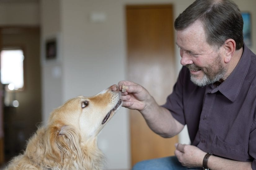 A golden retriever being given a treat by a happy smiling man indoors