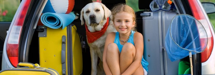 Dog with girl in car on family camping vacation