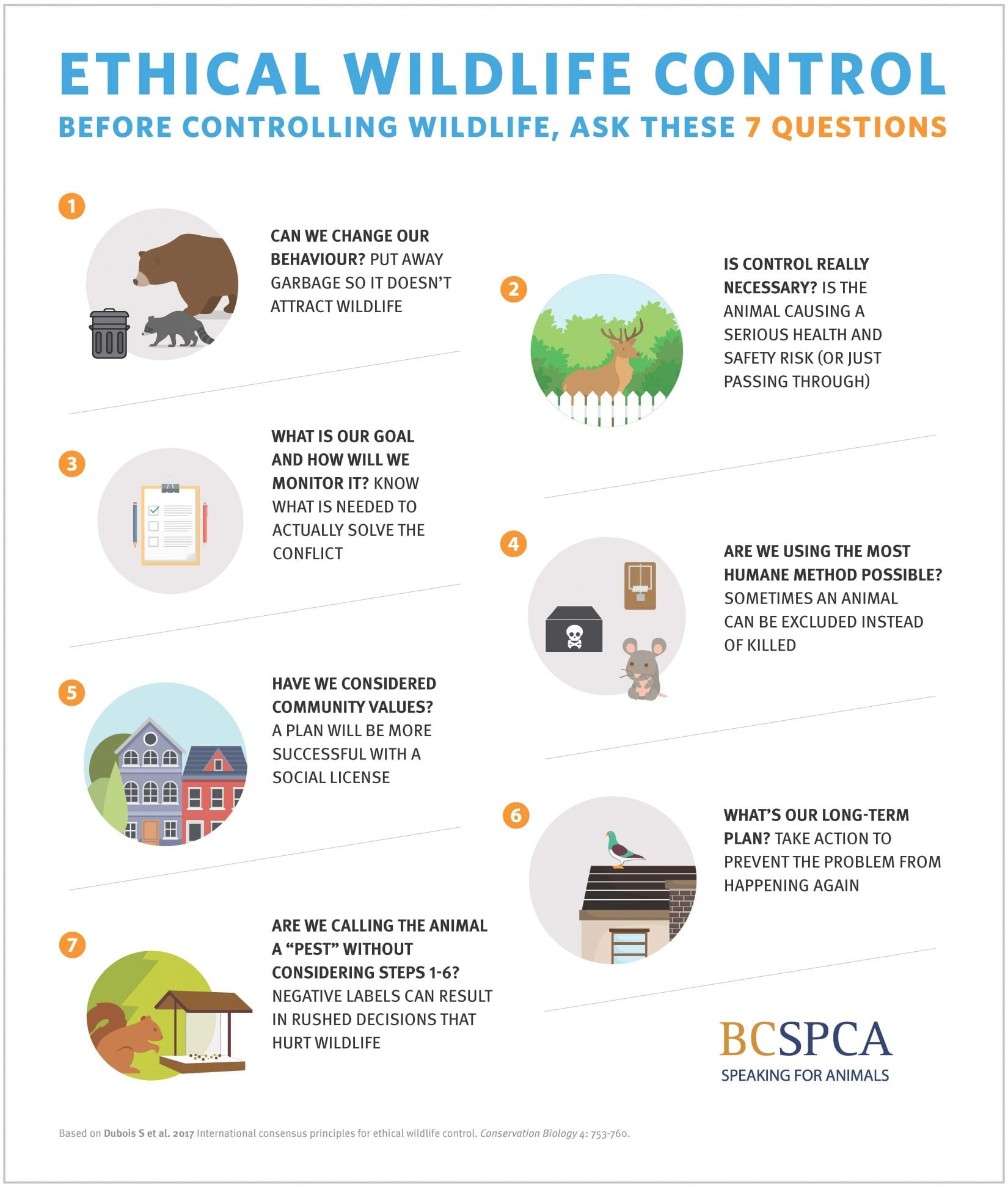 How to live with urban wildlife