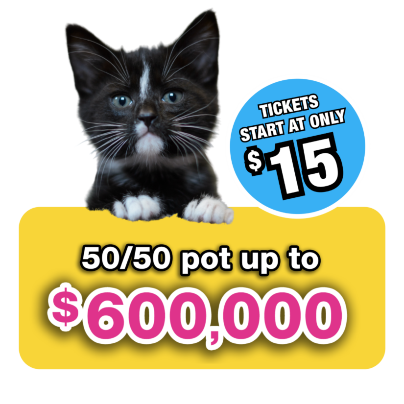 bc spca 5050 lottery