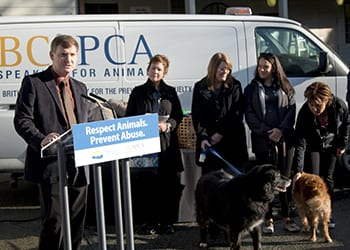 New regulations for dog and cat breeders announced | BC SPCA