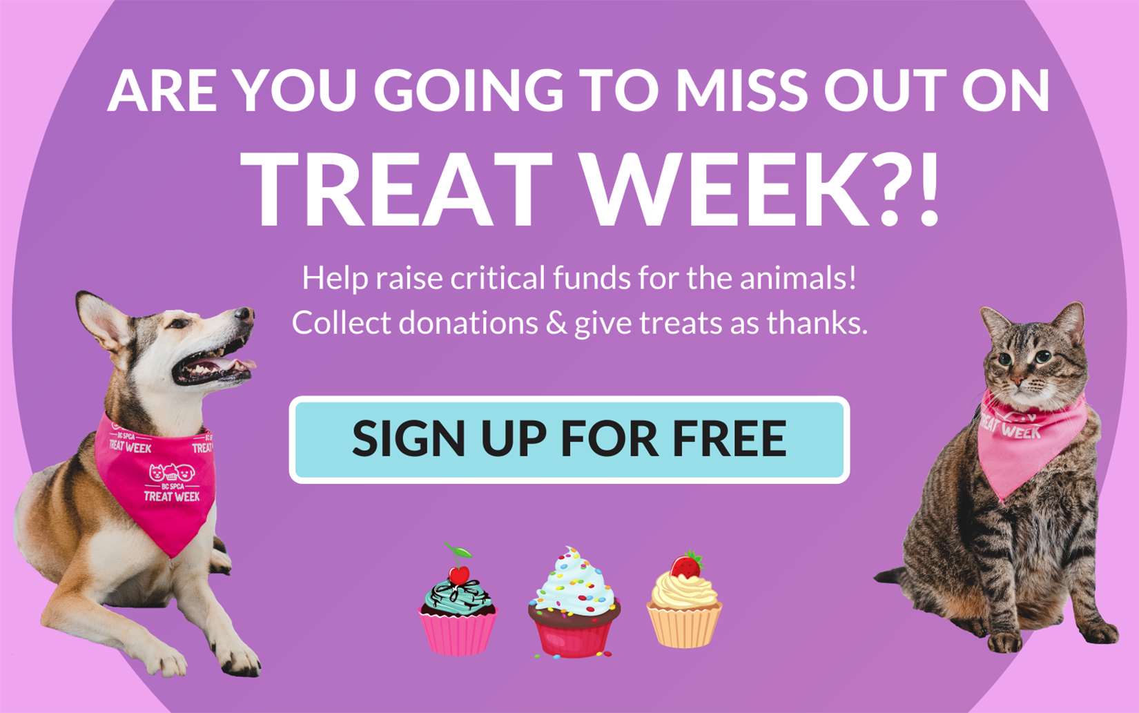 Register for Treat Week today!