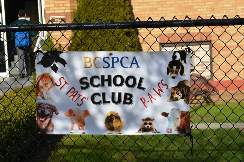 BC SPCA school club banner hanging on fence outside