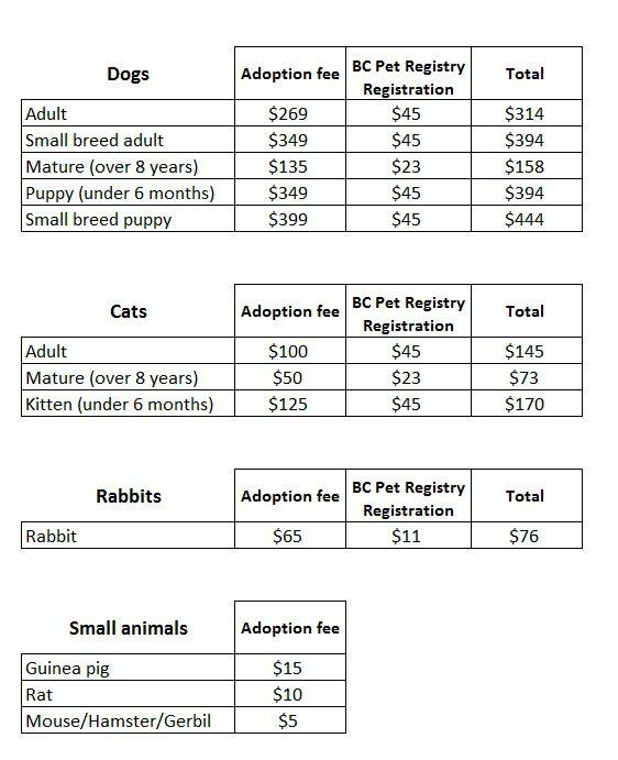 Shuswap Branch Adoption Fees Chart