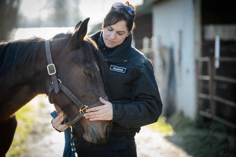 Cruelty investigative Department staff in uniform petting horse outdoors